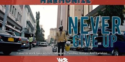 Harmonize - Never Give Up