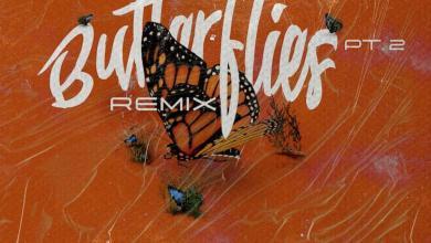 Photo of Music: Queen Naija – Butterflies Pt. 2 Remix Feat. Wale