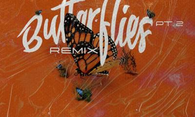 Queen Naija - Butterflies Pt. 2 Remix