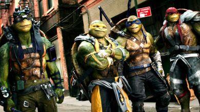Photo of Seth Rogen Produced Teenage Mutant Ninja Turtles Movie In The Works