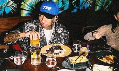 Tyga New Mixtape 'Well Done Fever'