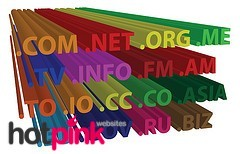 Check your domain name expiry date