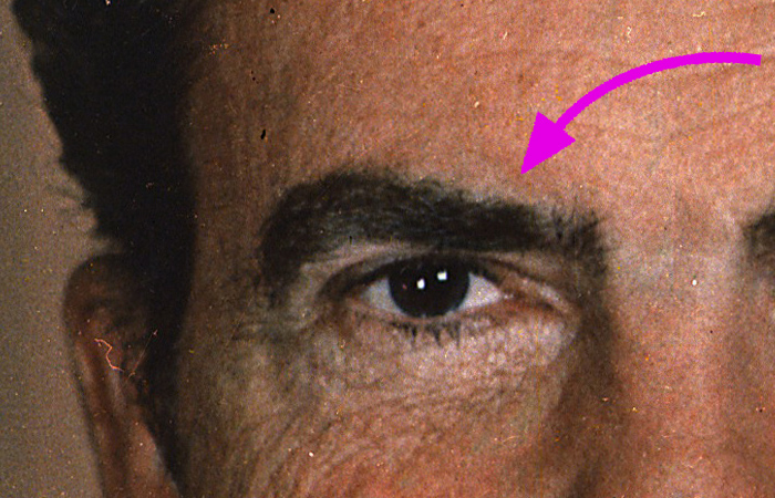 Richard Nixon's right eyebrow