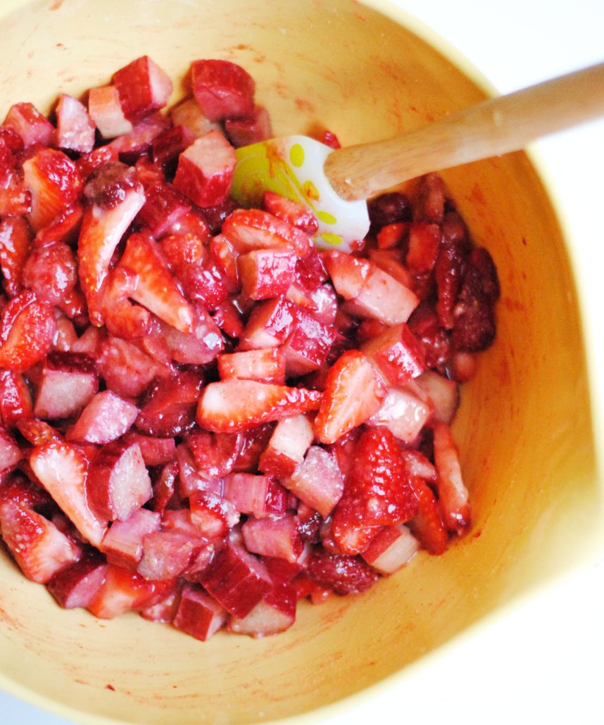 strawberryrhubarb9