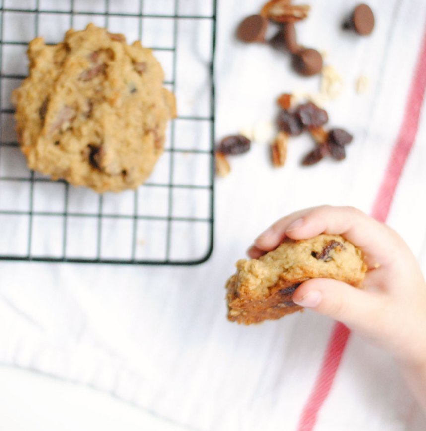 Chocolate Chip Chickpea Cookies | Hottie Biscotti