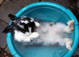Easter hot tub showroom opening hours