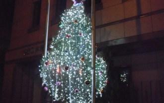 SEC本社前のクリスマスツリー