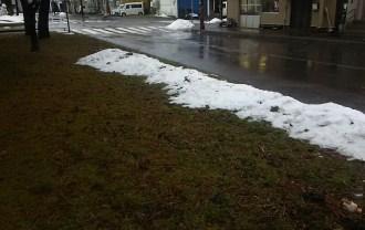 雨で雪が融けた道路