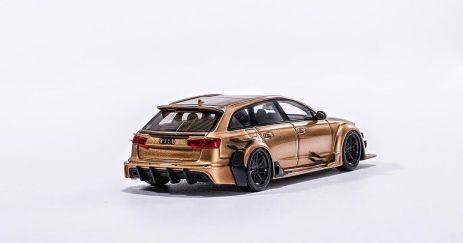 YM-Model-Audi-RS6-DarwinPro-DTM-Gold-003
