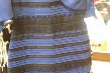 The dress (blue and black or white and gold?)