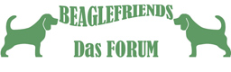 BeagleFriends Forum