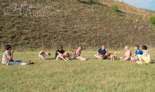 gemütliche Pause in der Hundefreilaufzone