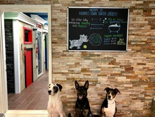 Pet Care Franchise Opens First New Jersey Location