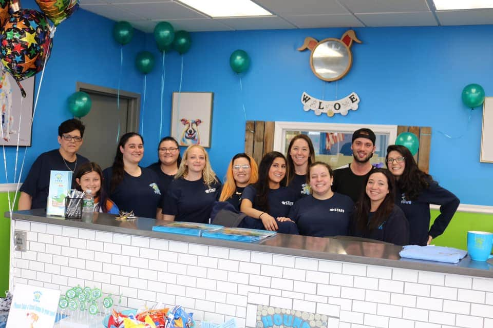 Doggie Day Care Hounds Town Hicksville Open for Business!