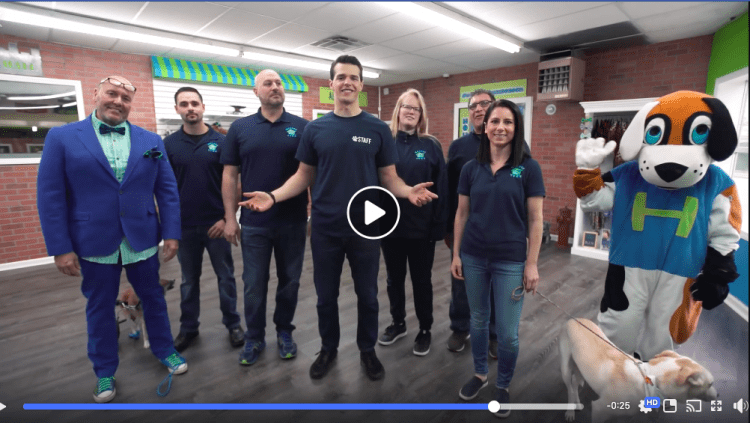 Watch the Fun New Video From Our Pet Franchise!