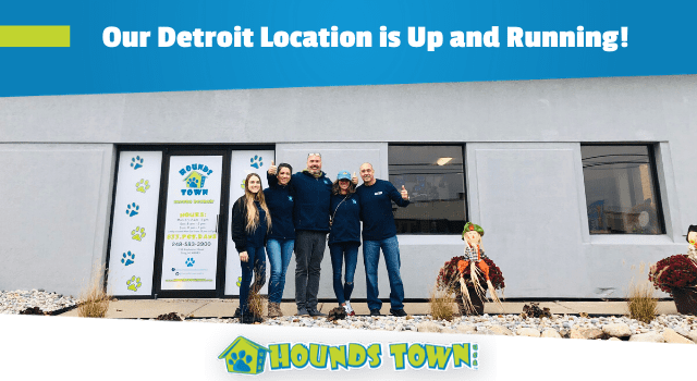 Hounds Town USA Dog Franchise Opens its Doors in Detroit!