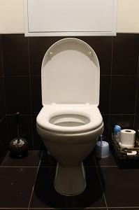 トイレお掃除 素材1