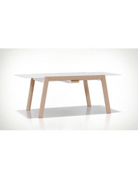 table a manger avec rallonge design scandinave spot