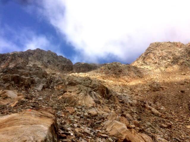Roter Knopf Nationalpark Hohe Tauern