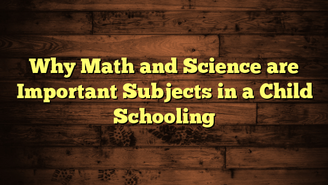 Why Math and Science are Important Subjects in a Child Schooling