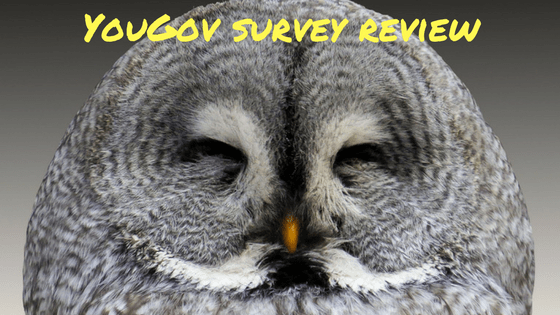 YouGov survey review