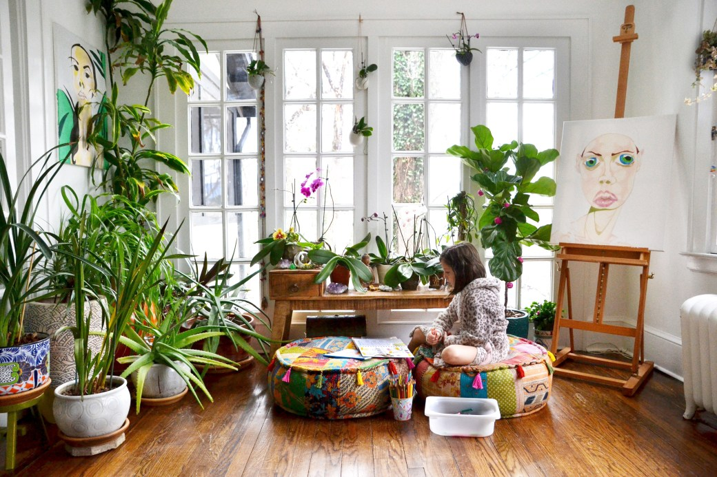 How to Care for House Plants   Get Rid of House Plant Bugs