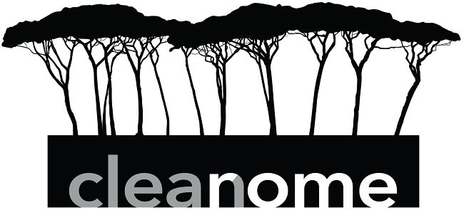 CleanRome