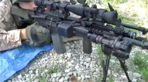A mall ninja rifle? Maybe so.