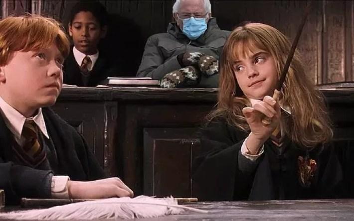 Hogwarts Bernie