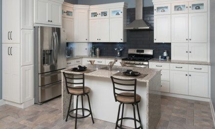 Affordable and Cheap Priced Kitchen Cabinets