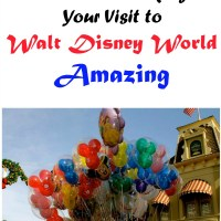 Tips on Making Your Visit to Walt Disney World Amazing
