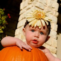 How to Photograph a Baby in a Pumpkin