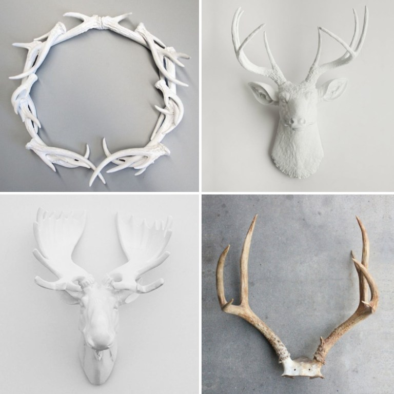 decorating-with-antlers