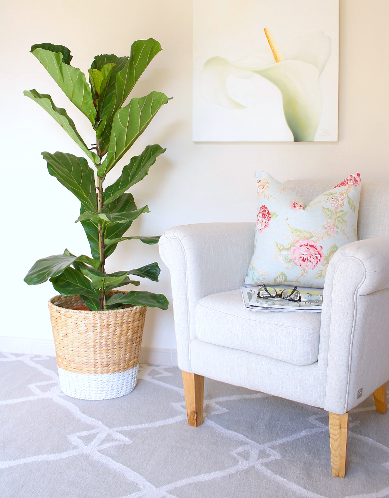 Diy Planter For My Fiddle Leaf Fig Tree House Of Hawkes
