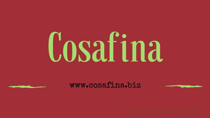 COSAFINA