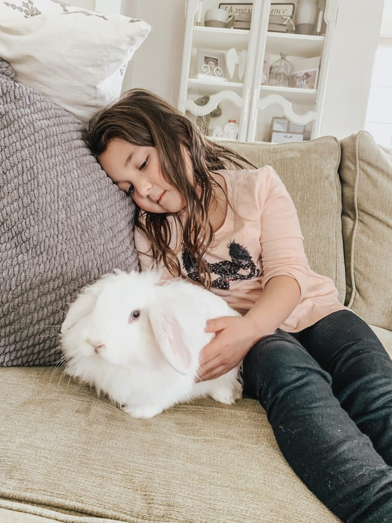 OUR NEWEST FAMILY ADDITION AND TEACHING YOUR KIDS TO LOVE ANIMALS