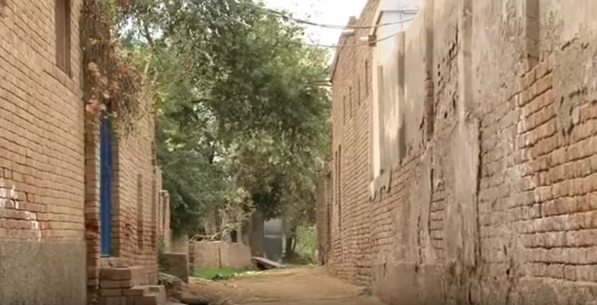 literate, education, Punjab