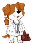 dog-medical