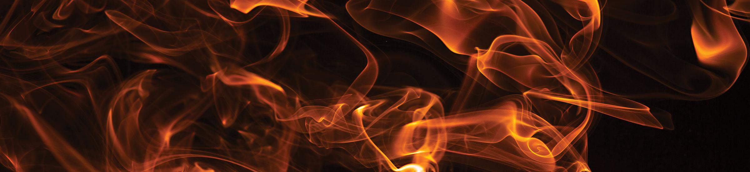 Stravinsky's Firebird Houston