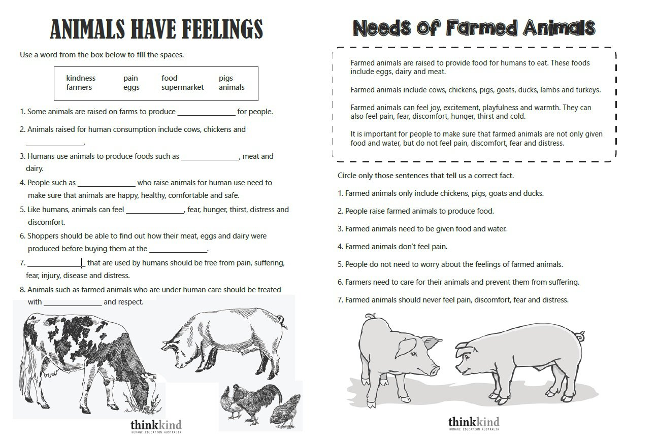 Basic Needs Of Humans Worksheets