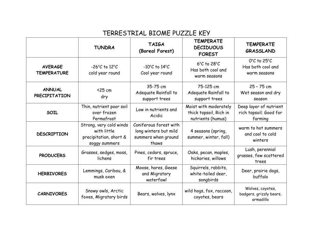 Biome Adaptations Worksheet