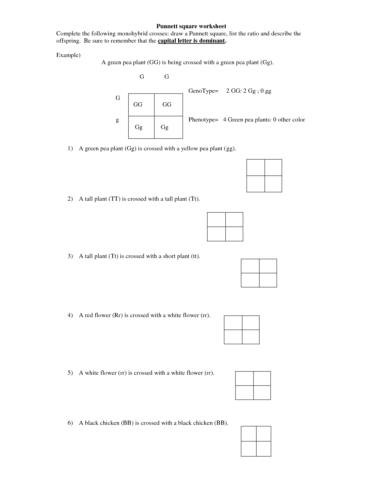 Monohybrid Cross Worksheets Answers Key