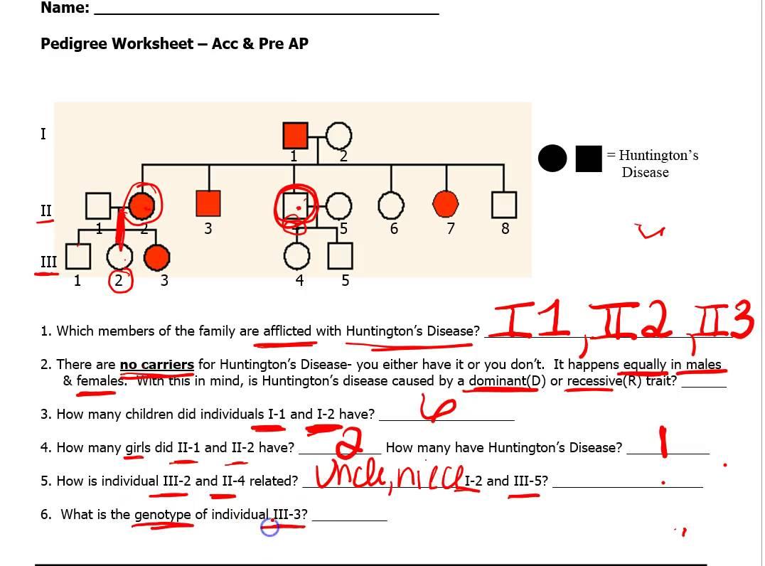 Genetics Pedigree Worksheet Answer Key Huntington S