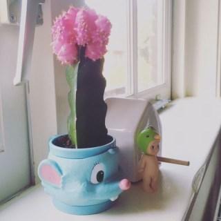 ijsbeker wordt superleuke cactuspot op meidenkamer