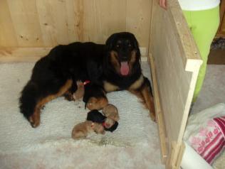Kurz nach der Geburt