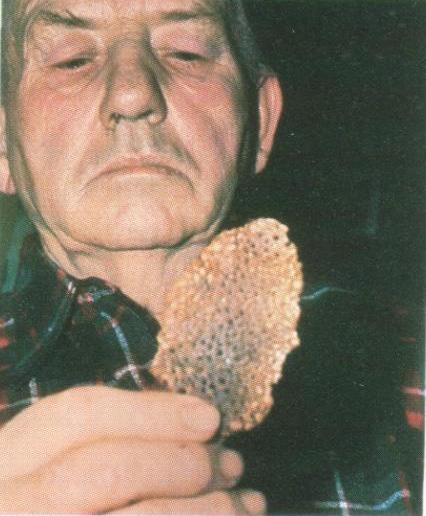 alien gave pancake to US farmer