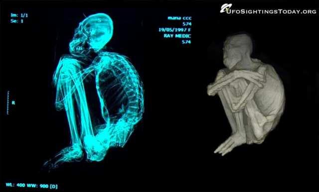 nazca mummies