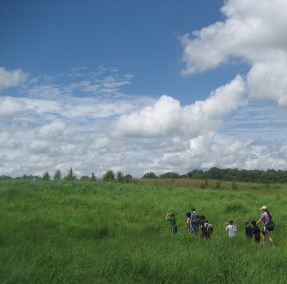 Nature Campers hiking in beautiful meadows - summer camp at the Howard County Conservancy