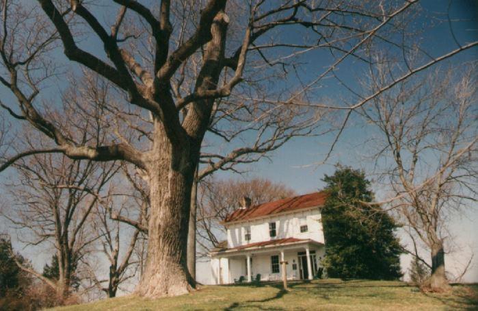 History of the Farmhouse