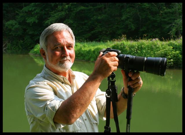 Sauntering with Wildlife Photographer Frank Marsden